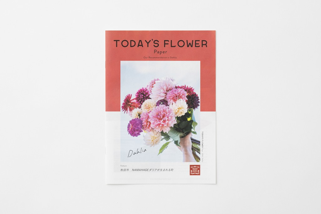 """AFM TODAY'S FLOWER """"Dahlia"""" Other Image"""